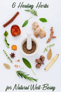 6 Healing Herbs for Natural Well-Being