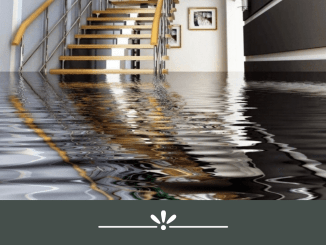 reasons why you need water damage restoration services