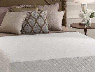 spring or memory foam mattress