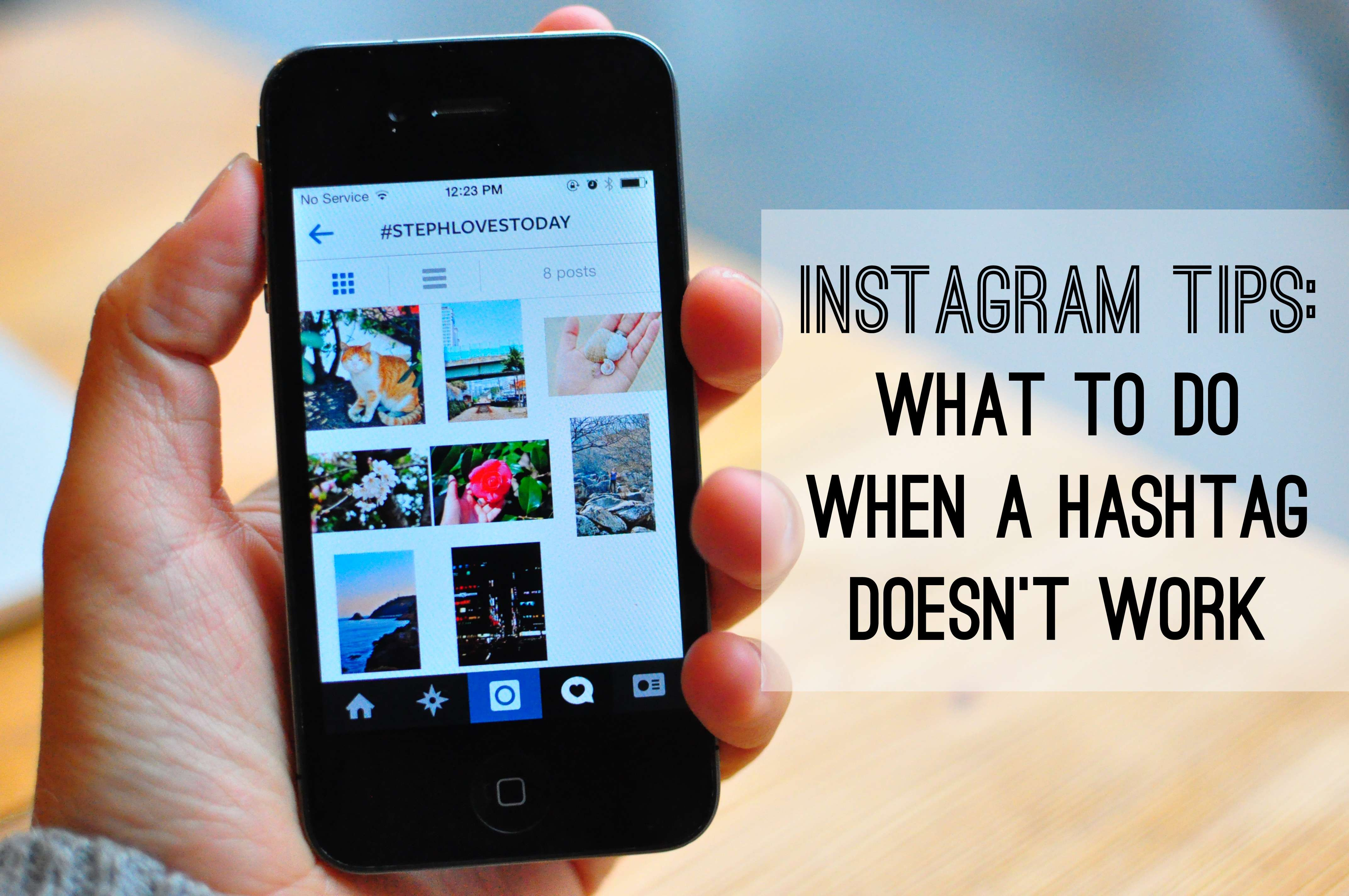 How to Search Instagram for Tags and Users - Lifewire
