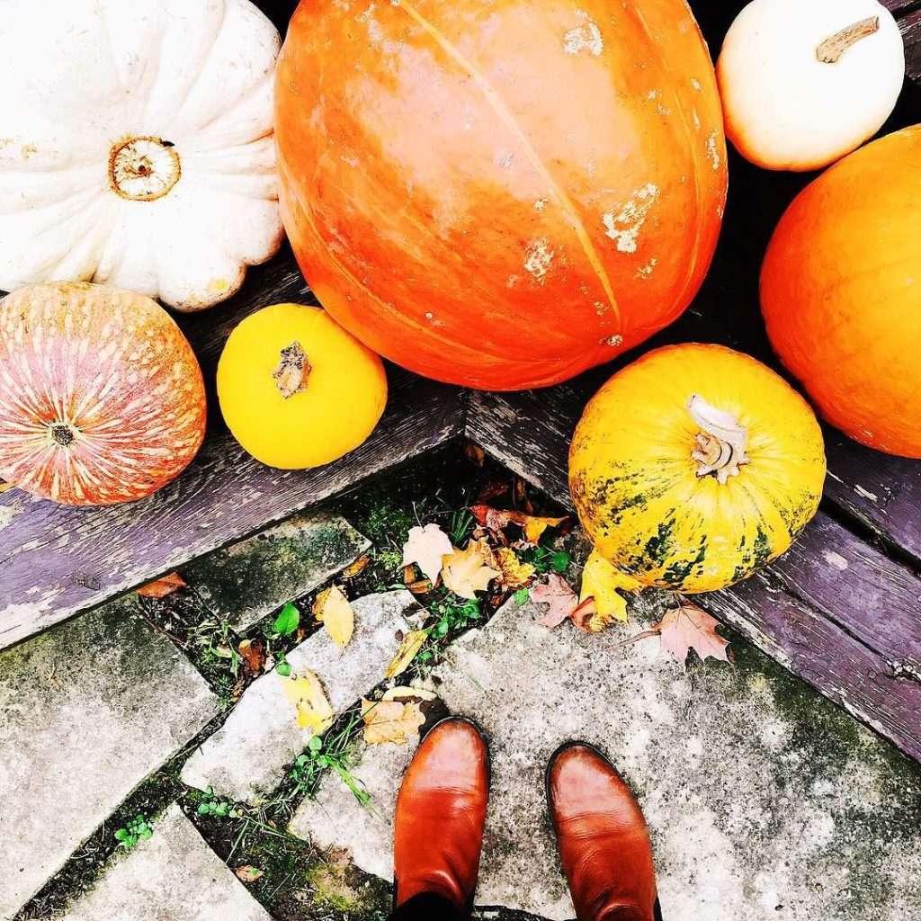 Inspiration November 11 >> Life In Limbo