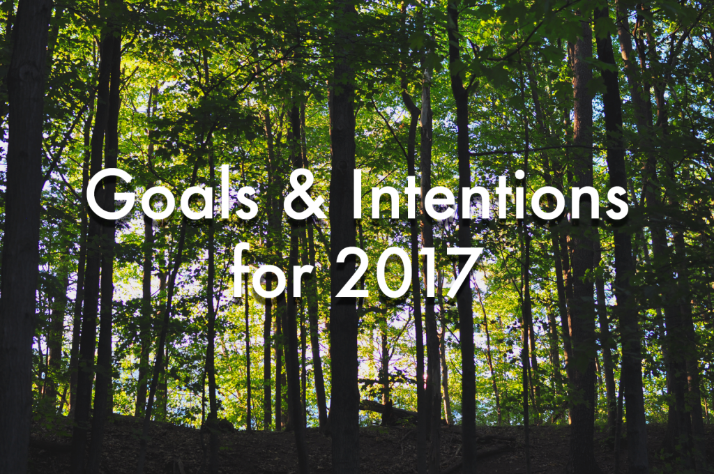 Goals & Intentions for 2017 >> Life In Limbo
