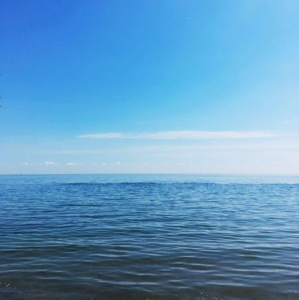 Just Keep Swimming >> Life In Limbo