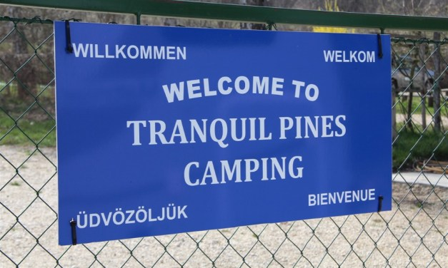 The 'Real Hungary' at Tranquil Pines