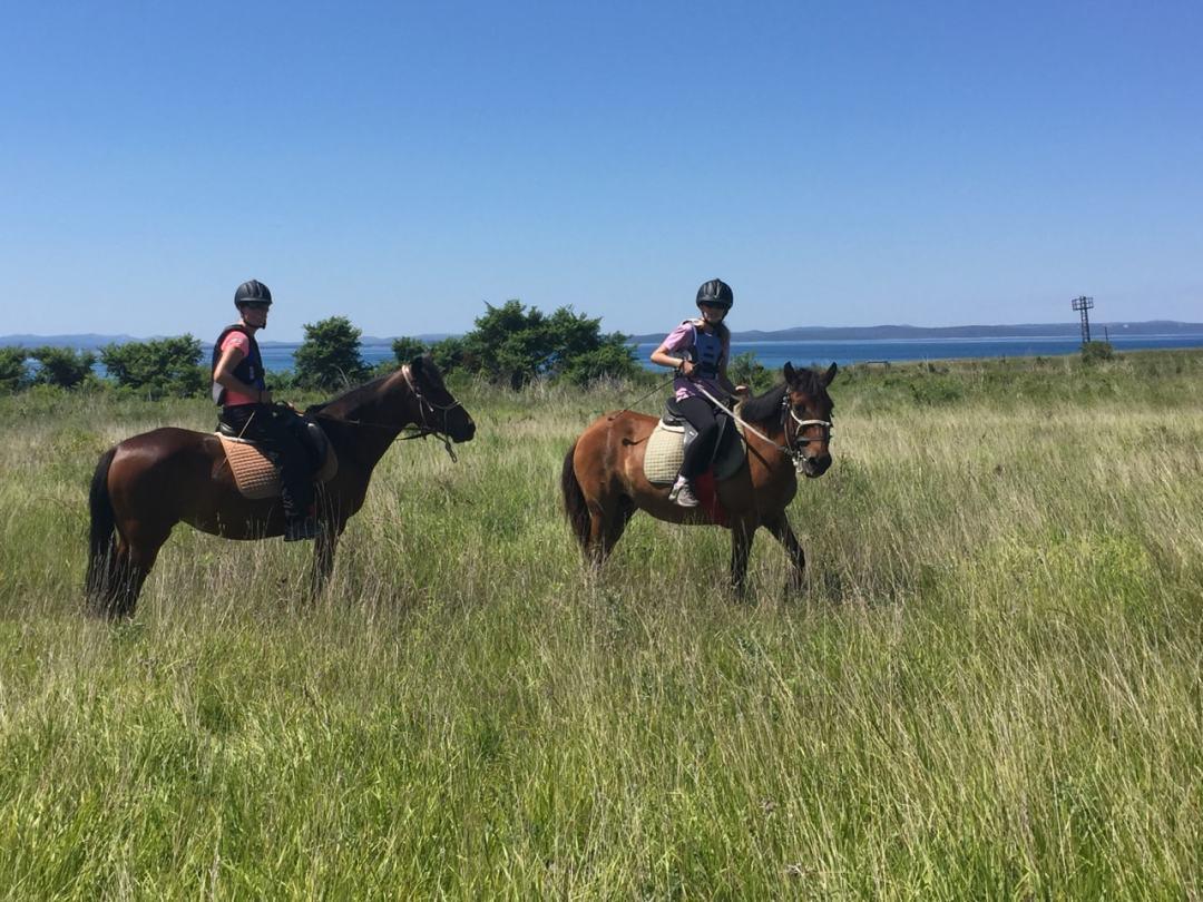 Leg 11 Croatia Zaton Horse Riding - 1 (29)-min