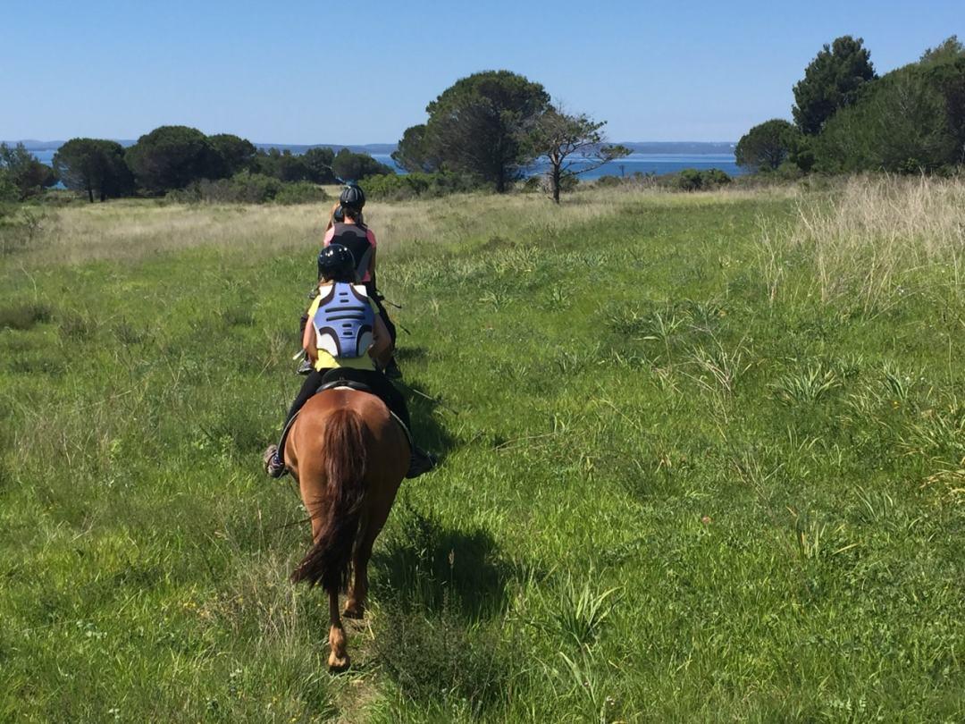 Leg 11 Croatia Zaton Horse Riding - 1 (32)-min