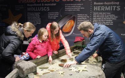 LifeinourVan's Budding Marine Biologists Explore Scarborough's Sea Life Centre