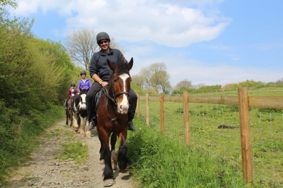 Horse Riding - 8-min