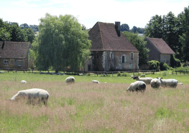 Loire19