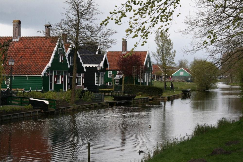 Tulip Fields Holland19
