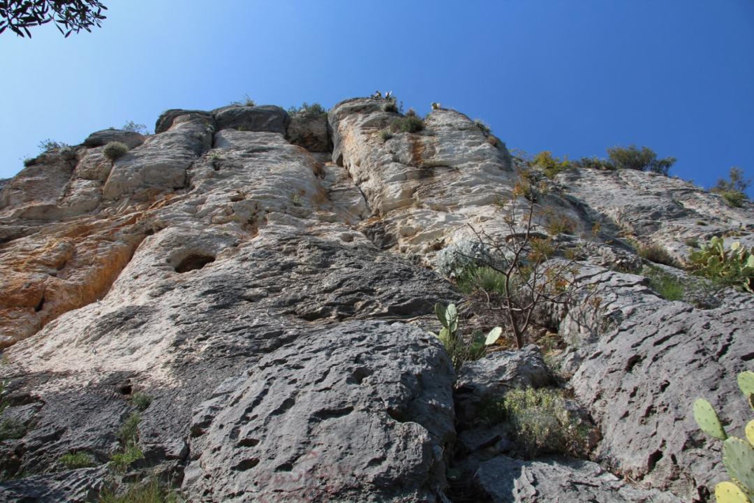climbing - 1 (6)-min