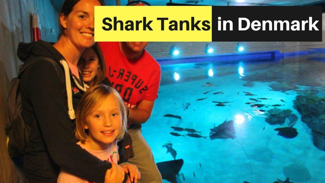 shark tank denmark-min-min