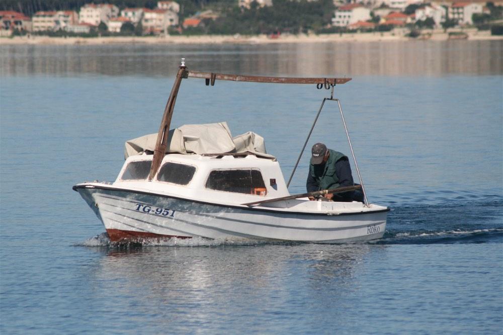 trogir dolphin - 1 (5)-opt