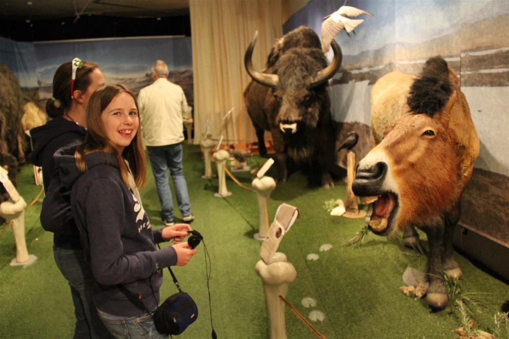 Neanderthal Museum Dusseldorf10