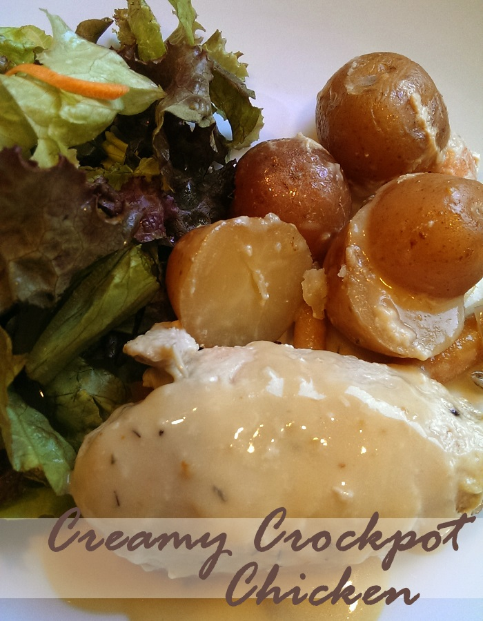 Crockpot Chicken and Potatoes with an Easy Rich Delicious Sauce