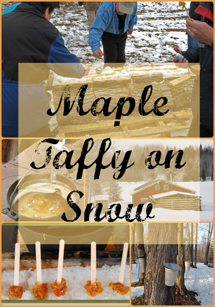 Collage Maple Taffy on Snow