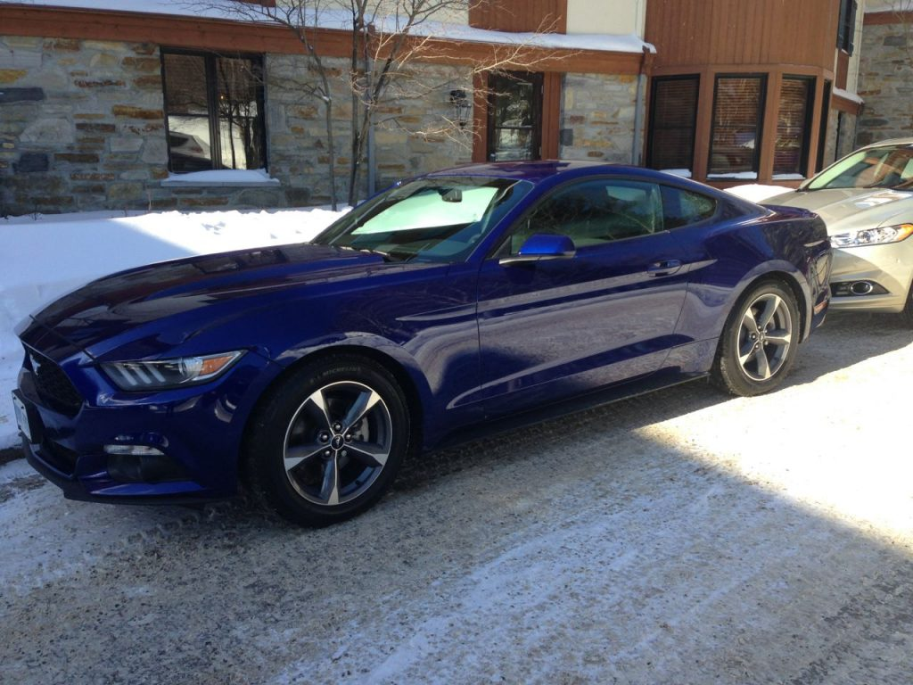 Time is a luxury, 2015 Ford Mustang, cobalt blue
