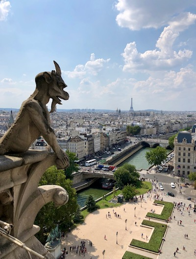 first trip to Paris, top of Notre Dame