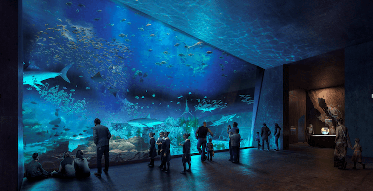 Mazatlán Aquarium, why go to Mazatlán, is Mazatlán family friendly