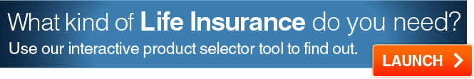 Insurance best prices