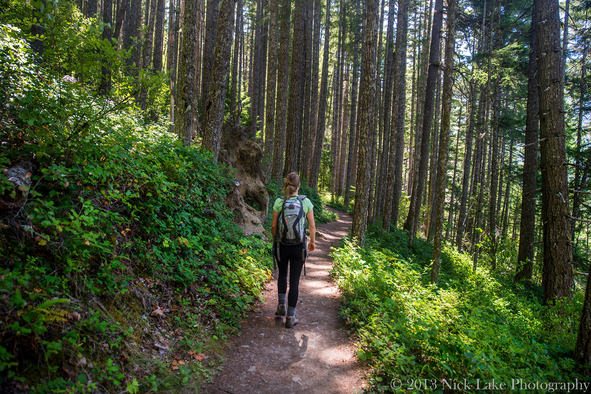 Woman Hiking Forest near Elwha River, Olympic National Park, Washington