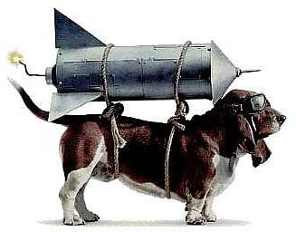 canine-rocket