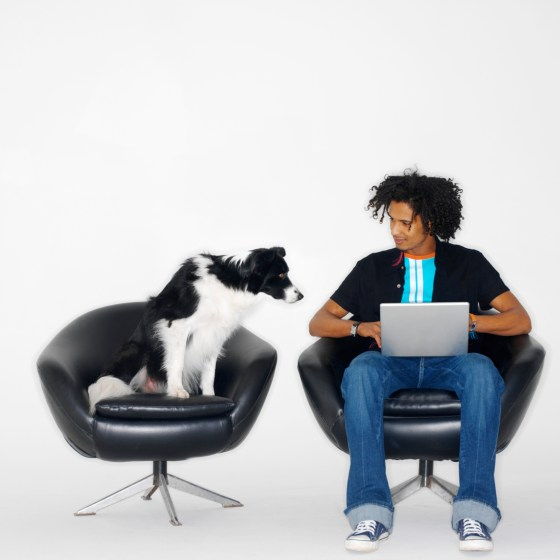 Building A Dog Blog - Man And Dog Working Together