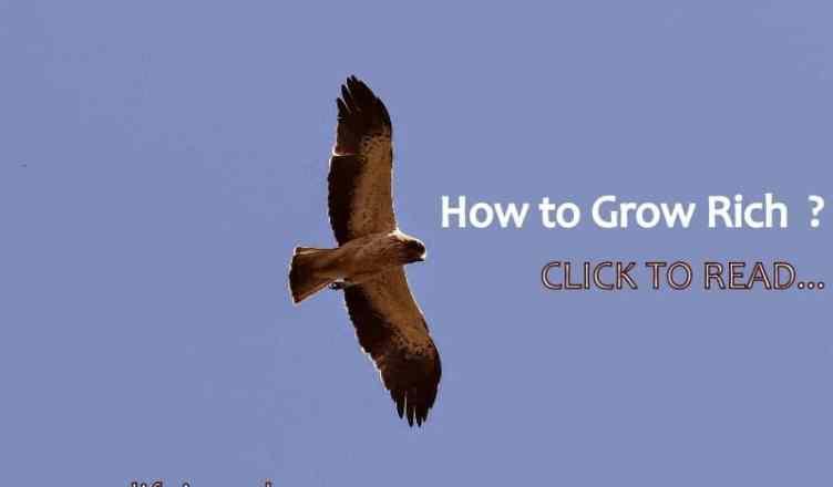 Think rich grow rich
