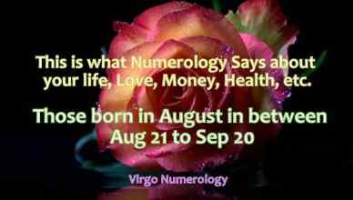 Virgo traits