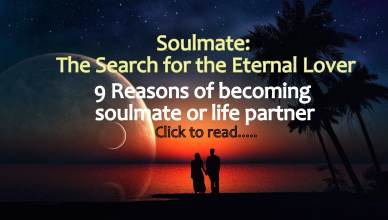 Soulmate Life partner reunion