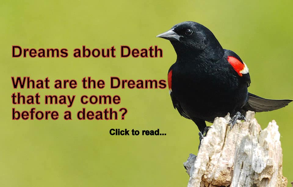 21 Dreams about DEATH 21 Dream Marriage