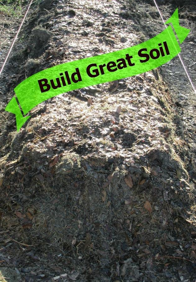 how to build million dollar vegetable garden soil easy to follow tips for organic gardening