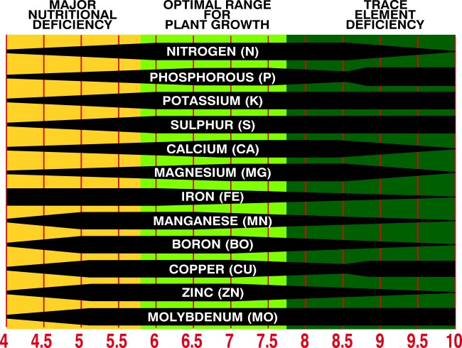 Soil Ph Chart  How Your SoilS Ph Affect Your Plants  Life Is