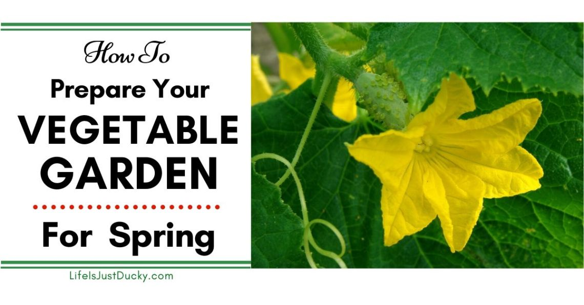 How To Prepare Your Garden For Spring Planting Life Is Just Ducky