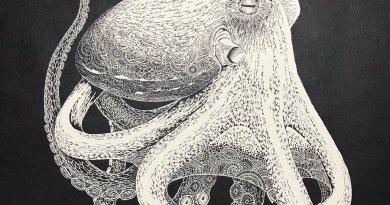 Il polpo di carta di Masayo Fukuda