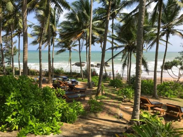 Sri Lanka (66)