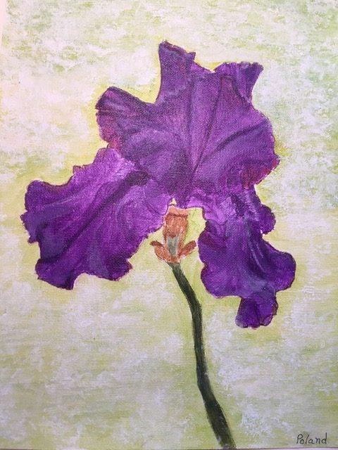 "Donna Poland ""Purple Iris"" (acrylic), Neg"