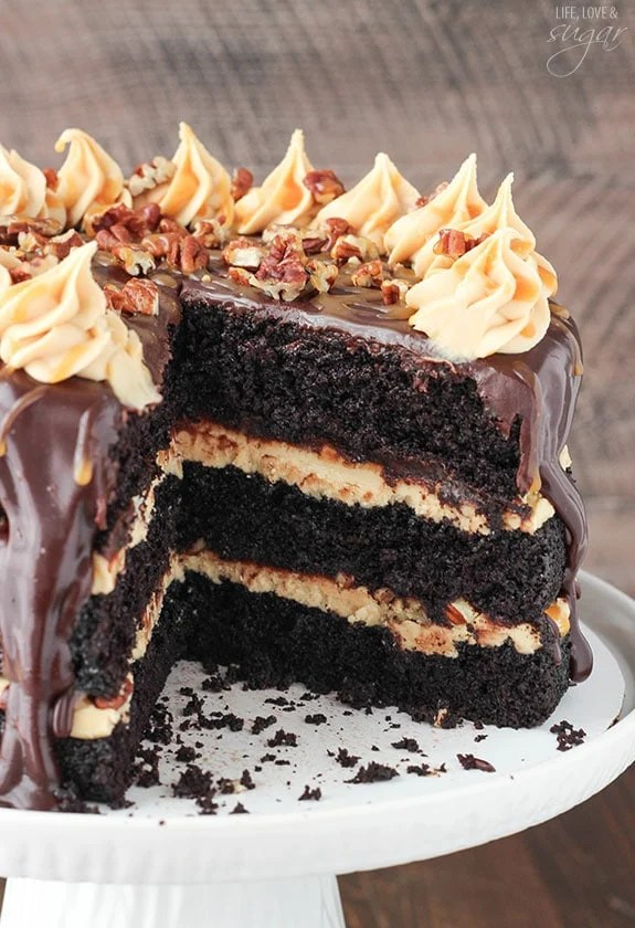 Turtle Chocolate Layer Cake Life Love And Sugar