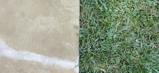 flagstone and grass