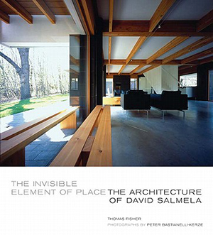 Invisible Element of Place The Architecture of David Salmela
