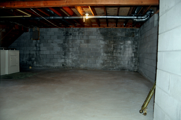 Reserve Creepy scary basement delirium, opinion