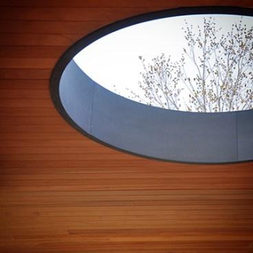 Oculus detail