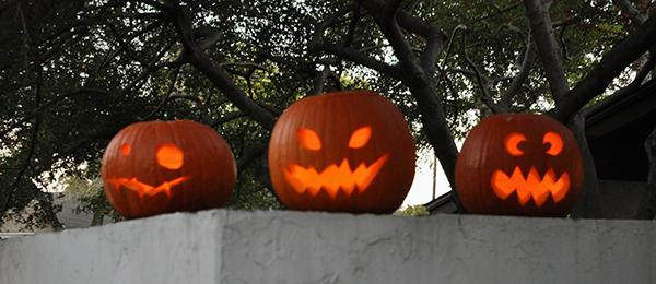Bob Borson Halloween Pumpkins 2012
