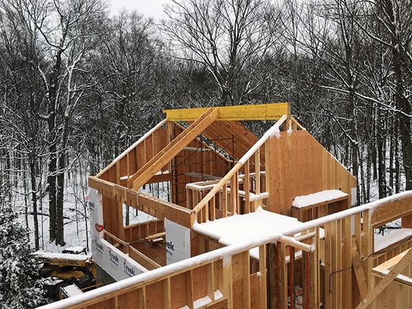 Cabin Rooftop framing
