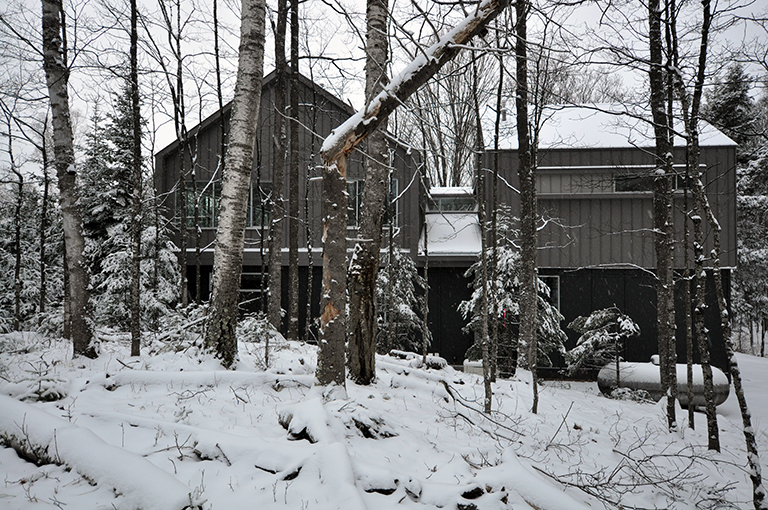The Cabin - view from the neighbor's yard