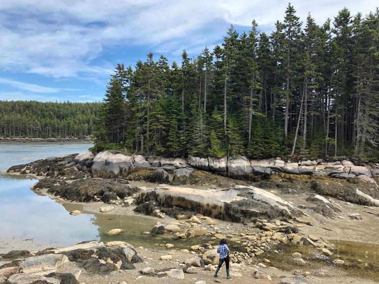 Maine coastline - Low tide - photo by Bob Borson