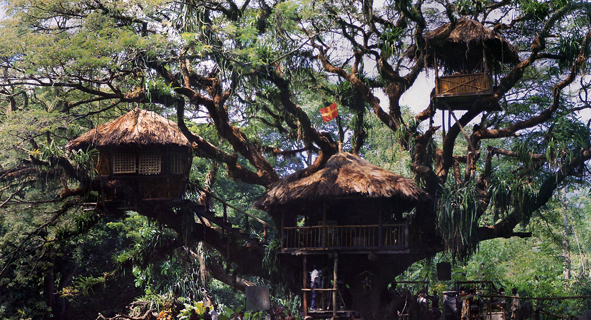 Andrew Hawkins living in a Treehouse