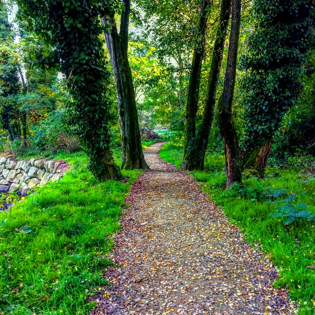 hiking, walking, nature, outdoors, galicia