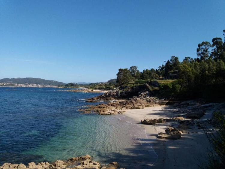 walks, healthy,  fitness, outdoors, forest, nature, hike, hiking, galicia
