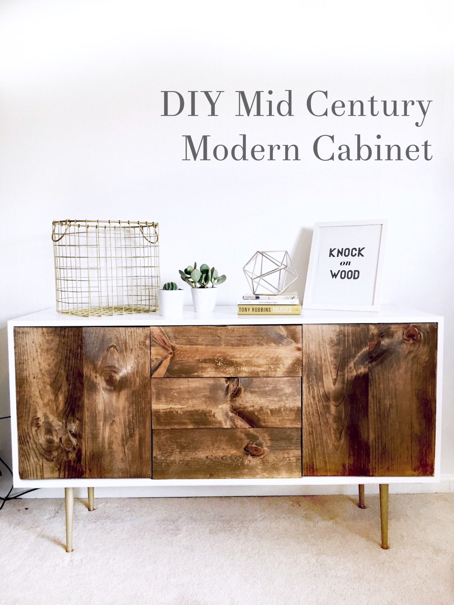 DIY Organic Modernism Inspired Cabinet under $250